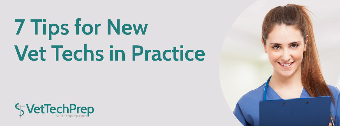 7-Tips-for-New-Vet-Techs-in-Practice