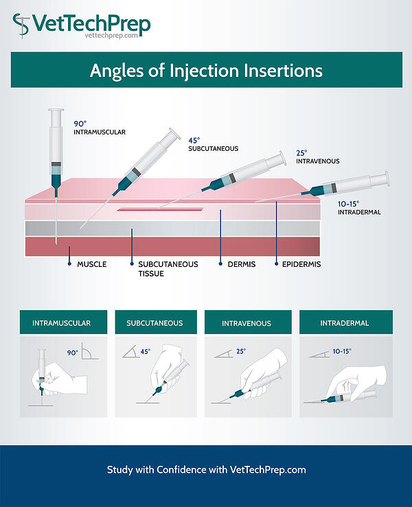 INJECTION-INSERTION