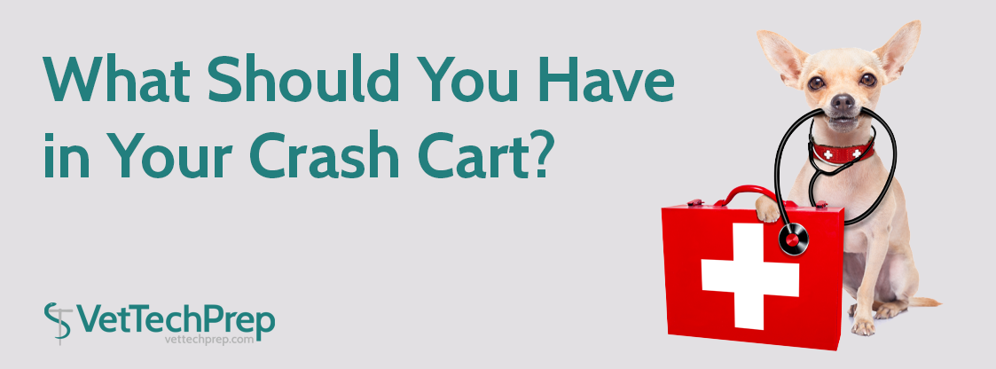 What-Should-You-Have-in-Your-Crash-Cart-HEAD