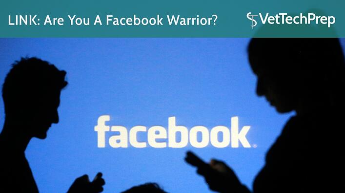 LINK-Are-You-A-Facebook-Warrior.jpg