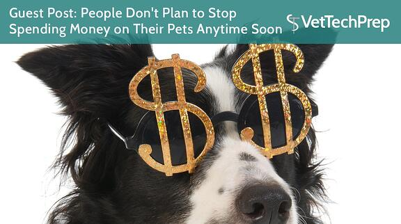 LINK-Guest-Post--People-Don't-Plan-to-Stop-Spending-Money-on-Their-Pets-Anytime-Soon.jpg