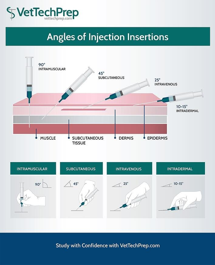 injections-VTP copy.jpg