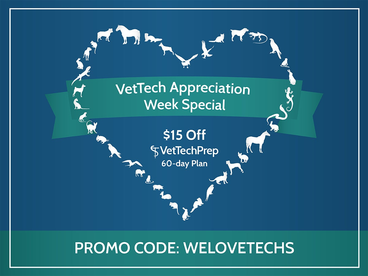 Save $15 off 60-day Subscription!
