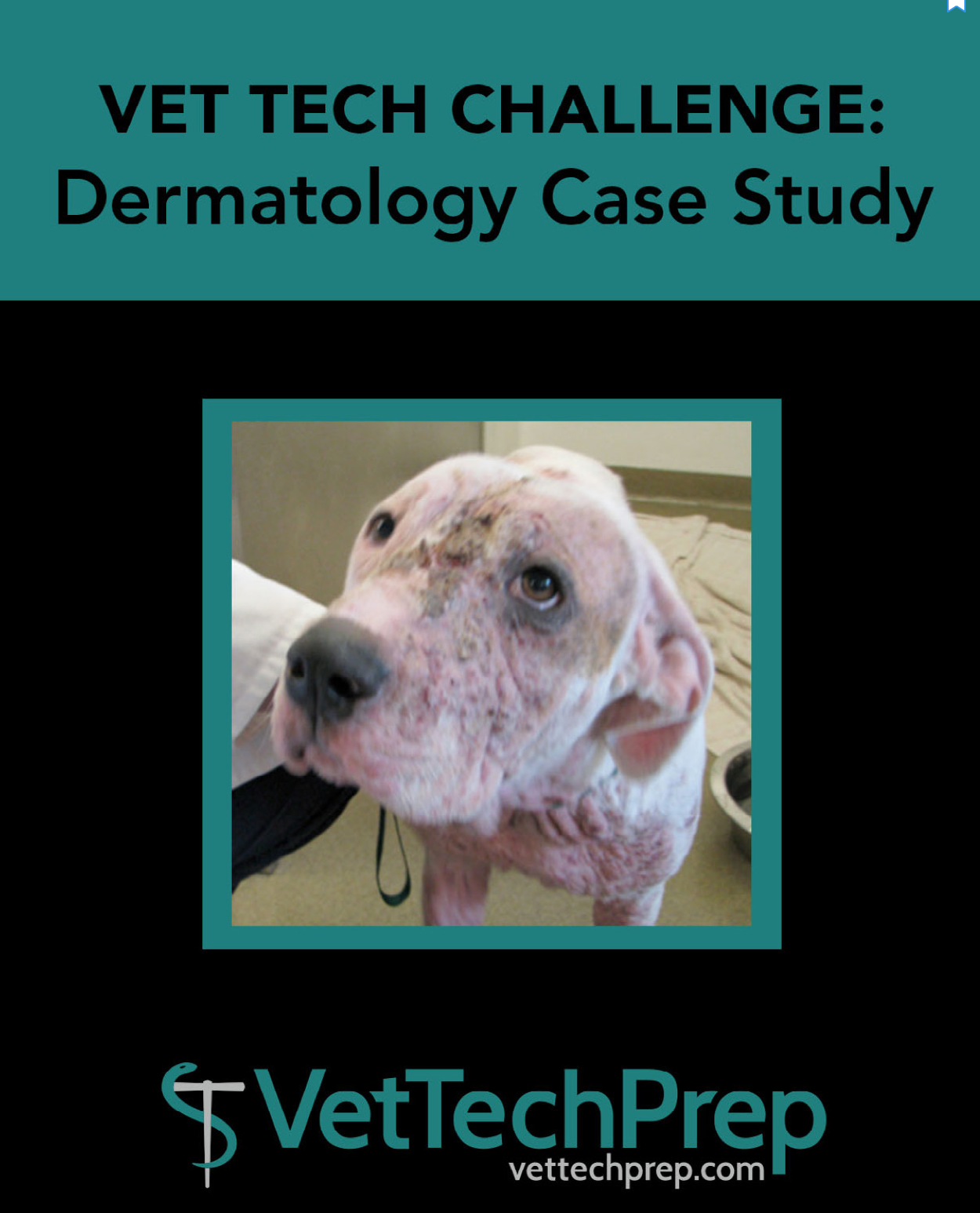 case studies in veterinary technology rockett The veterinary technician's guide to writing soaps: critical thinking workbook |  books,  case studies in veterinary technology by rockett & christensen.